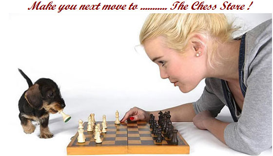 about-us-2-girl-playing-chess-and-dog.jpg